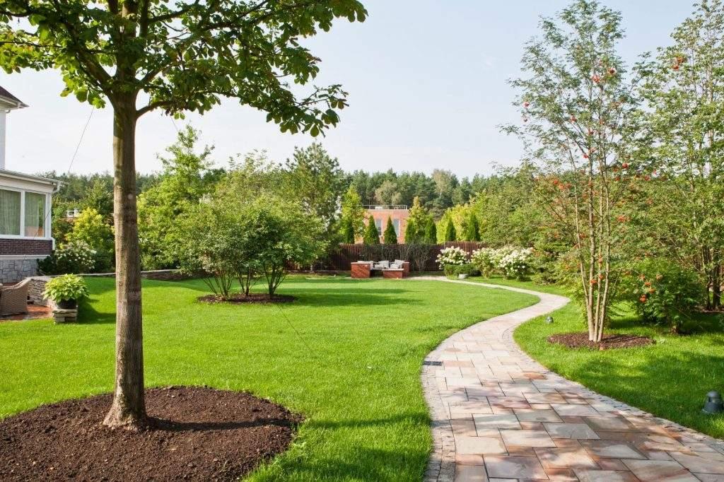 paysagiste 91 Dc paysage Jardin entretien travaux de jardinage élagage